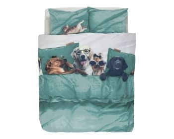 Covers & Co Renforce Bettwäsche Lazy Dogs Sea Green Artikelbild 6